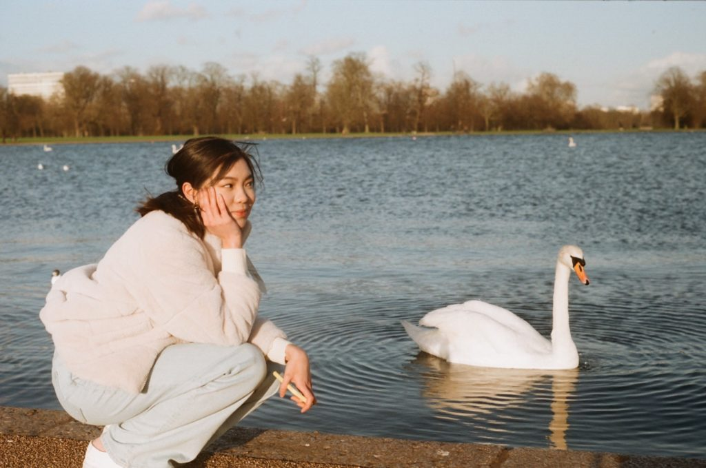 A woman sitting beside the lake with swan